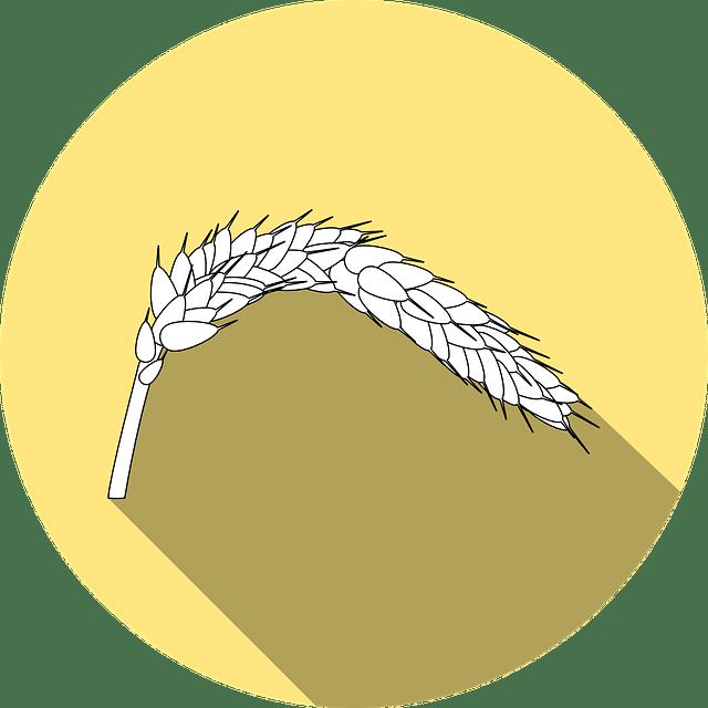 Allergene Symbole Kennzeichnung Getreide