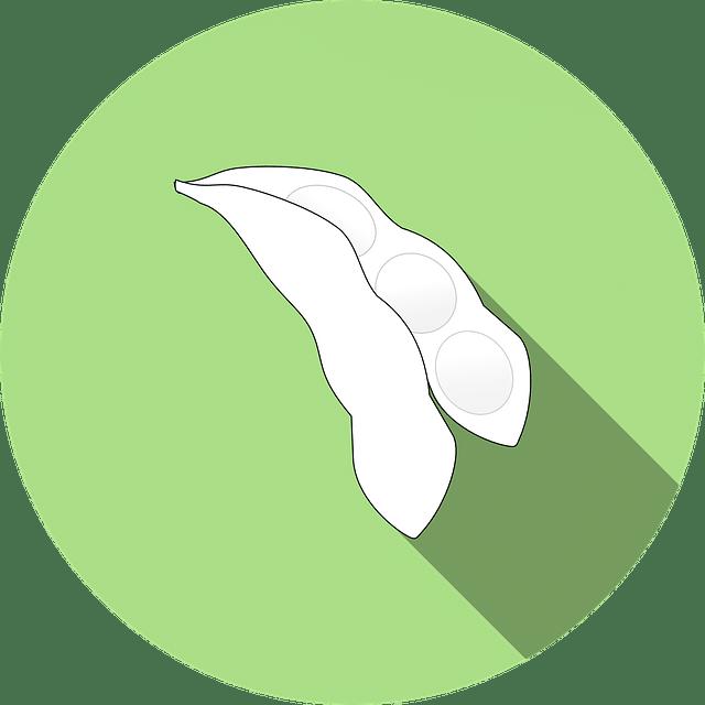 Allergene Symbole Kennzeichnung Soja