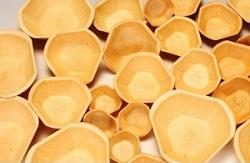 Essbare Schalen für den Gastrobedarf von Füllet