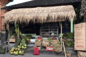 Auf dem Foto itst ein Obststand zu erkennen. Der Stand ist grün mit einem Dach aus getrockneten Palmenblättern. Recht im Stand befinden sich geflochtene Körbe, in denen Früchte sind. Links am Stand sind die großen Früchte wie Kokosnuss zu sehen. Der Straßenstand scheint Teil eines Ladens zu sein, denn er geht in den Laden hinein und man erkennt Regale in denen etwas steht im hinteren Bereich des Obststandes.
