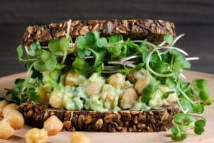 Sandwich Kicherbsen Sprossen