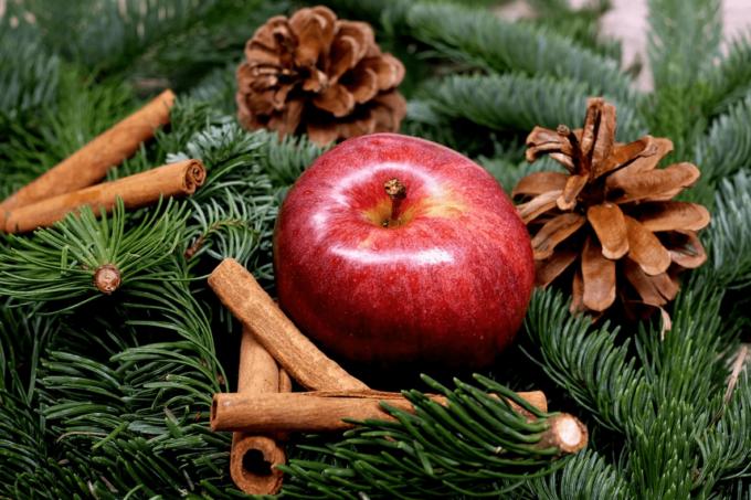 Ein Apfel liegt in der Mitte von Tannenzweigen, die ihn umgeben. Rechts und dahinter befinden sich noch jeweils ein Tannenzapfen. Vor dem Apfel sind drei Zimtstangen in einer Dreiecks-Form übereinander gelegt. Das Bild wirkt auf den Betrachter weihnachtlich.