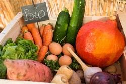 """Man erkennt auf dem Foto Bio-Gemüse in einem Korb. Links in der Ecke ist ein kleines Schild, auf dem mit Kreide geschrieben """"Bio"""" drauf steht. In dem hellen Korb aus Holz befindet sich Zucchini, Kürbis, Knoblauch, Zwiebel, Karotten und vieles mehr."""