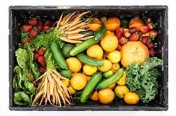 Verschiedene Sorten von Obst und Gemüse sind aus der Vogelperspektive in einer Kiste zu sehen. Unter anderem Gurken, Kürbis, Erdbeeren, Möhren und Orangen.