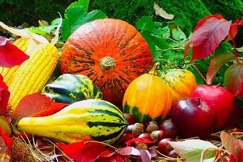 Auf dem Bild sind verschiedene Kürbissorten sowie Mais, Äpfel und Kastanien zu sehen