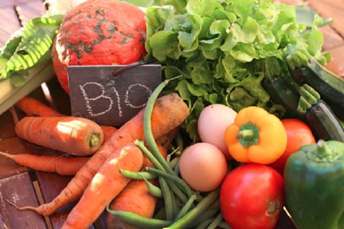 Bio Gemüse mit Schriftzug Bio