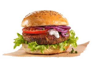 Burger aus Insekten - Bugfoundation