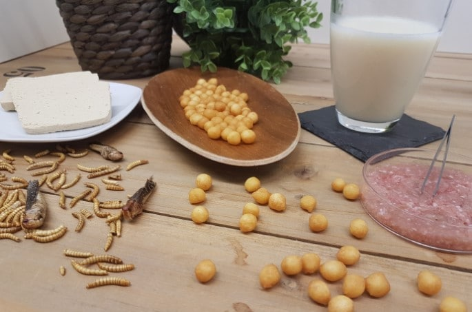 Insekten_Patty_Trends_Food Professionals