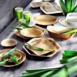 Verpackung nachhaltig Palmenblätter Pacovis