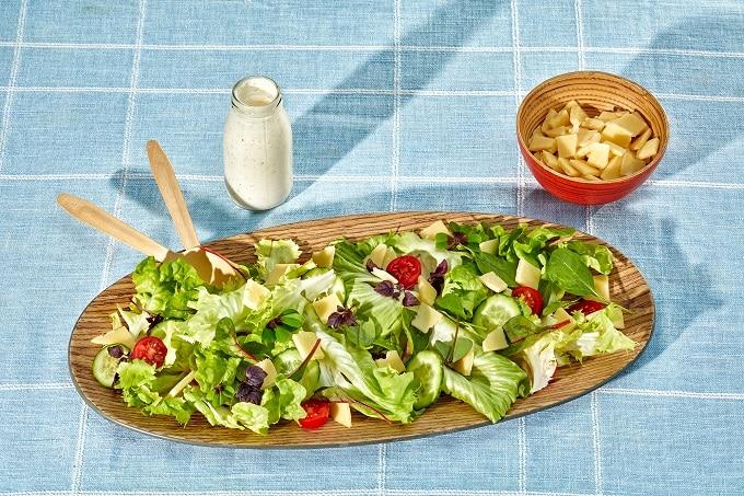 Salat Montery Jack Käse würfel Dairygold