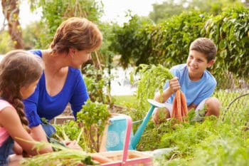 Familie beim Pflanzenanbau