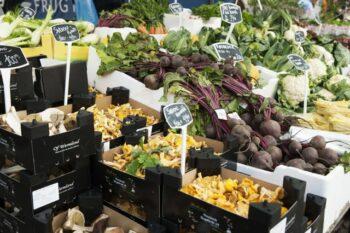 Bio Gemüse Dänemark