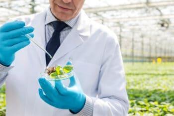 Hightech Ernte Nachhaltig Trend | snackconnection