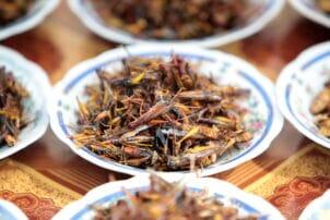 Frittierte Heuschrecken aus Thailand
