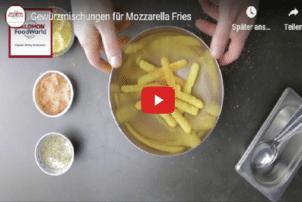 Salomon Mozzarella Fries