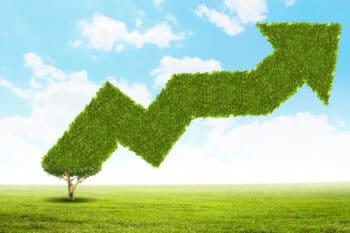 Wachstum-Graph-Nachhaltig | snackconnection