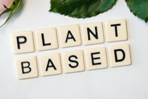 Plant Based Wörter auf Holzwürfel / snackconnection