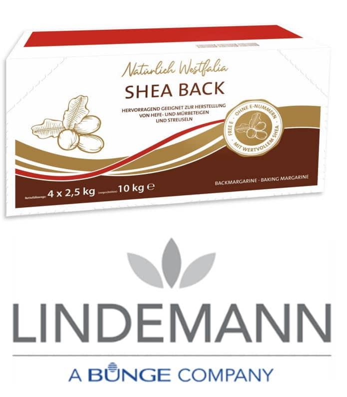 Lindemann Shea Back