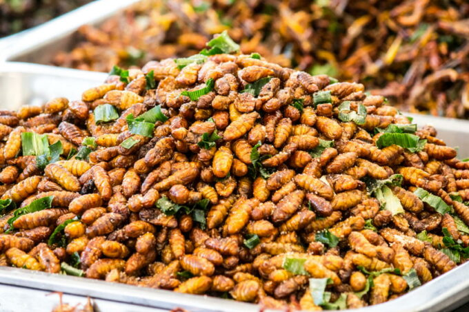 This is an insect fried foods that are high protein and very delicious / snackconnection
