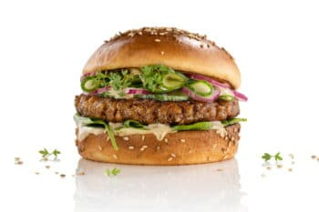 Veganer Homestyle Burger | snackconnection