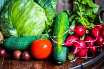 Gemüse Salat-Tomate-Gurke